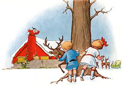 Reindeer-pictures-6